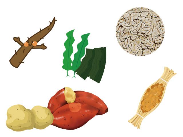 水溶性食物繊維を含む食品