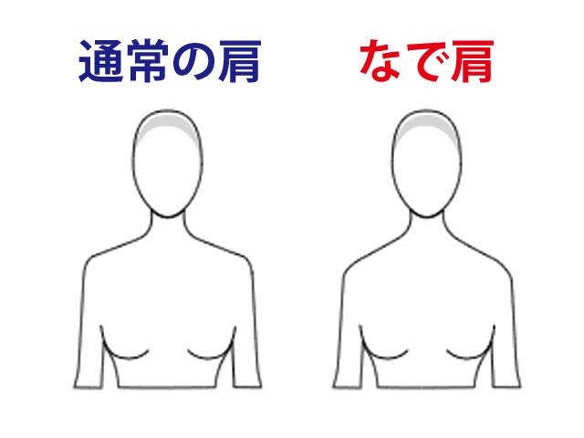 通常の肩となで肩の比較