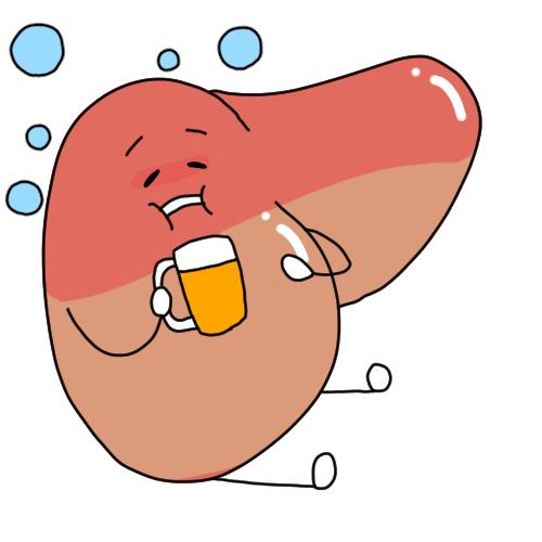 アルコール性脂肪肝